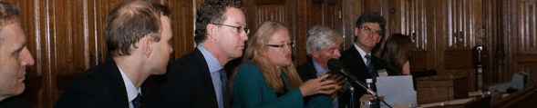 All-Party Parliamentary Group